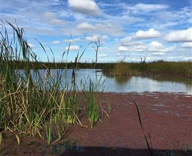 Gwydir Wetlands - Mackay Tourism