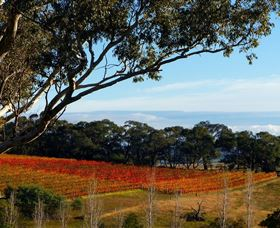 Bloodwood Estate - Mackay Tourism