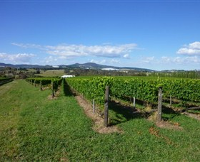 Hedberg Hill Wines - Mackay Tourism