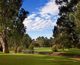 Commercial Golf Course - Mackay Tourism
