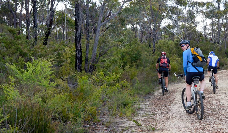 McMahon's Point ride - Wentworth Falls - Mackay Tourism