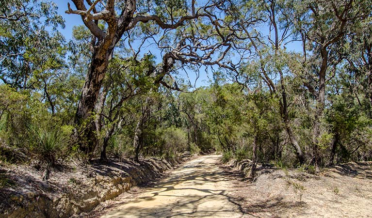 Howes trail - Mackay Tourism