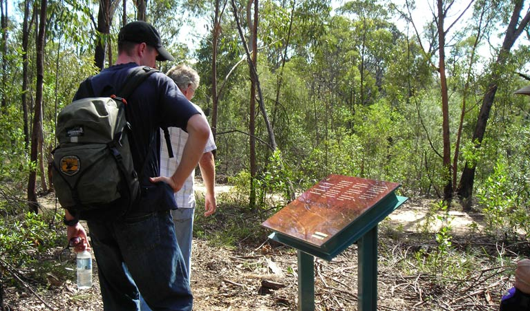 Finchley cultural walk - Mackay Tourism