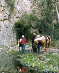 Yarramba Horse Riding - Mackay Tourism