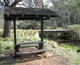 Barrington Tops State Forest - Mackay Tourism