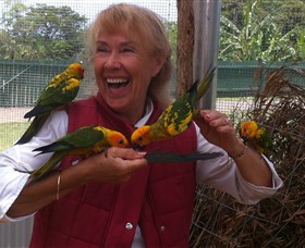 Maleny Botanic Gardens  Bird World - Mackay Tourism