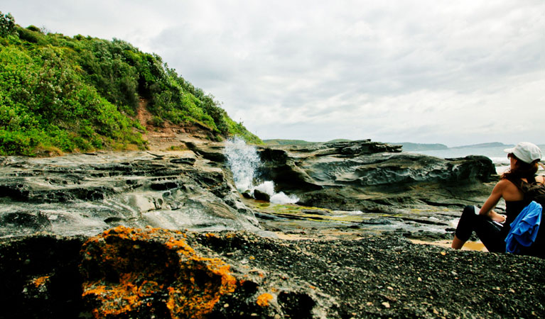 Glenrock State Conservation Area - Mackay Tourism