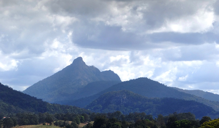 Wollumbin National Park - Mackay Tourism