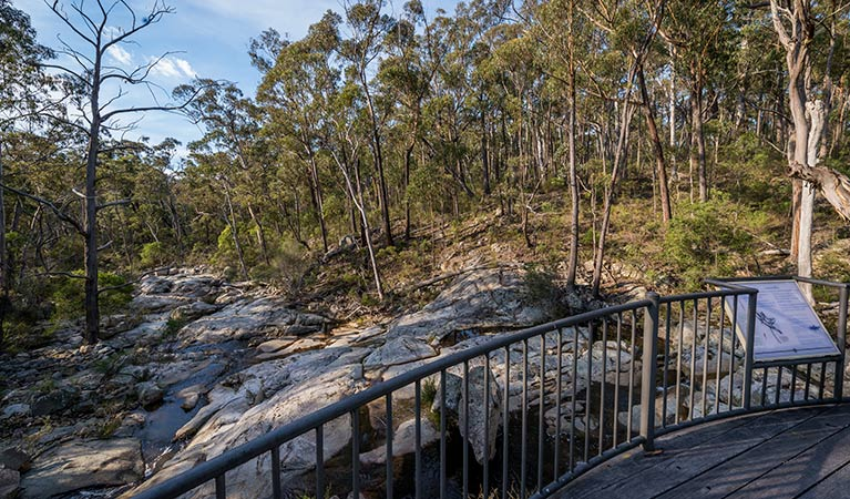 Myanba Gorge walking track - Mackay Tourism