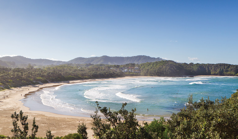 Coffs Coast Regional Park - Mackay Tourism