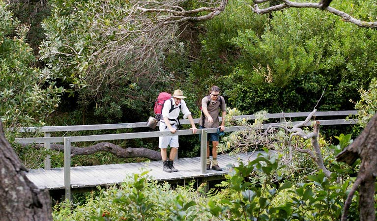 Wilsons Headland walking track - Mackay Tourism