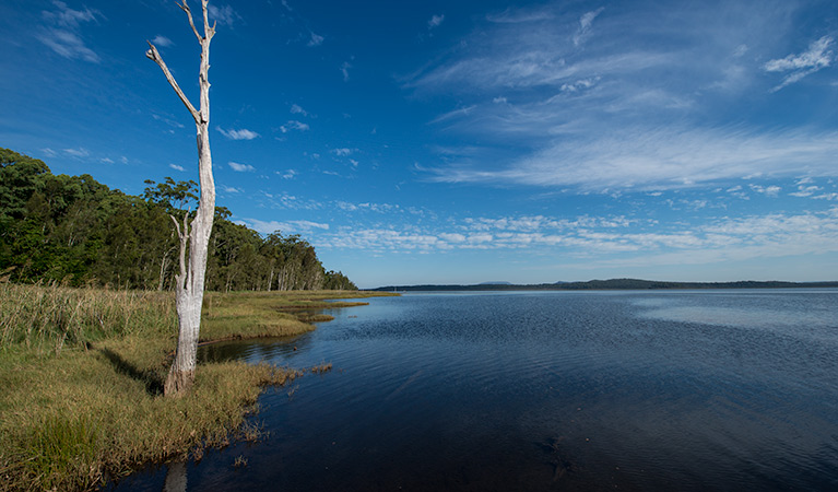 Lake Innes Nature Reserve - Mackay Tourism