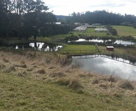 Guide Falls Farm - Mackay Tourism