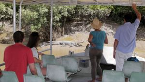 Whitsunday Crocodile Safari - Mackay Tourism
