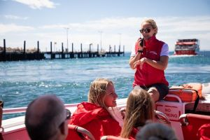 Rottnest Island Tour from Perth or Fremantle including Adventure Speed Boat Ride - Mackay Tourism