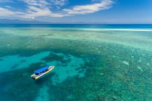 Ocean Safari Great Barrier Reef Experience in Cape Tribulation - Mackay Tourism