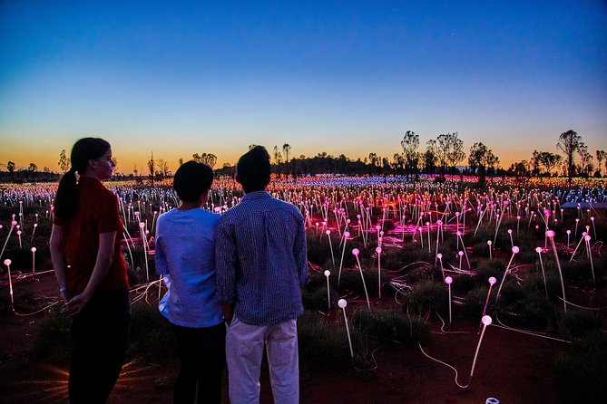 Uluru Field of Light Sunrise Tour - Mackay Tourism
