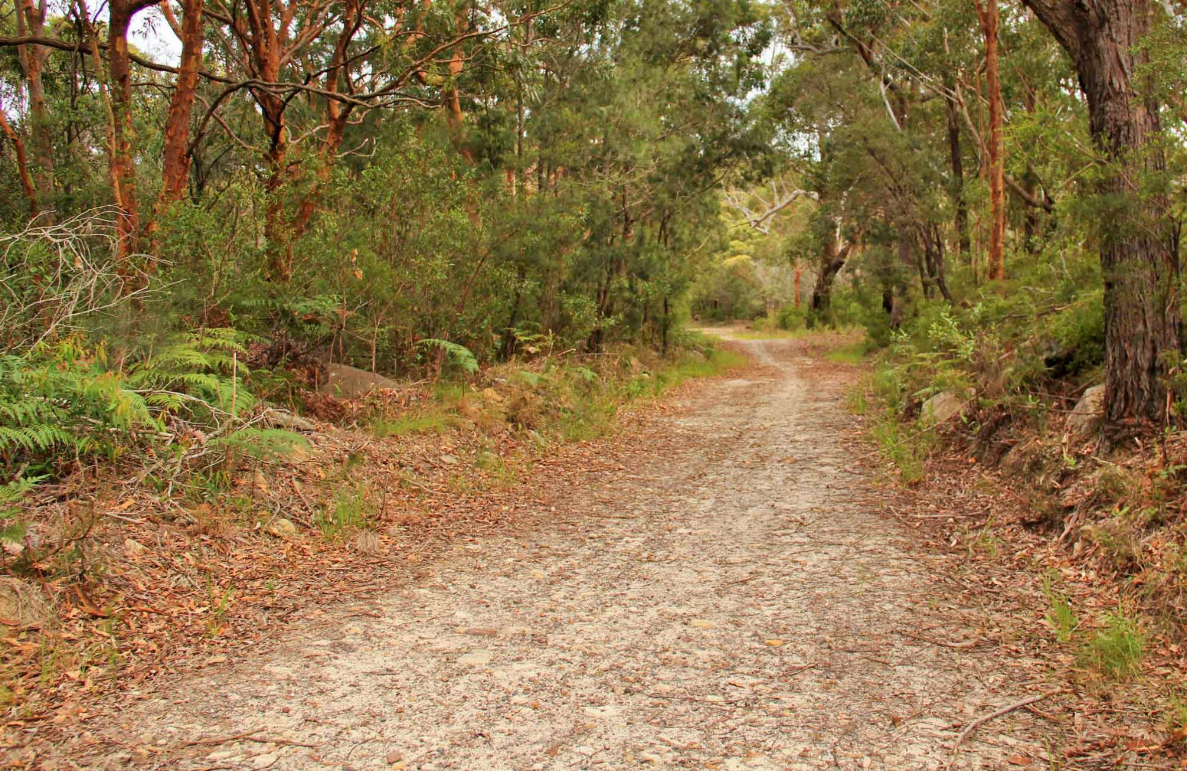 Daleys Point Walking Track - Mackay Tourism