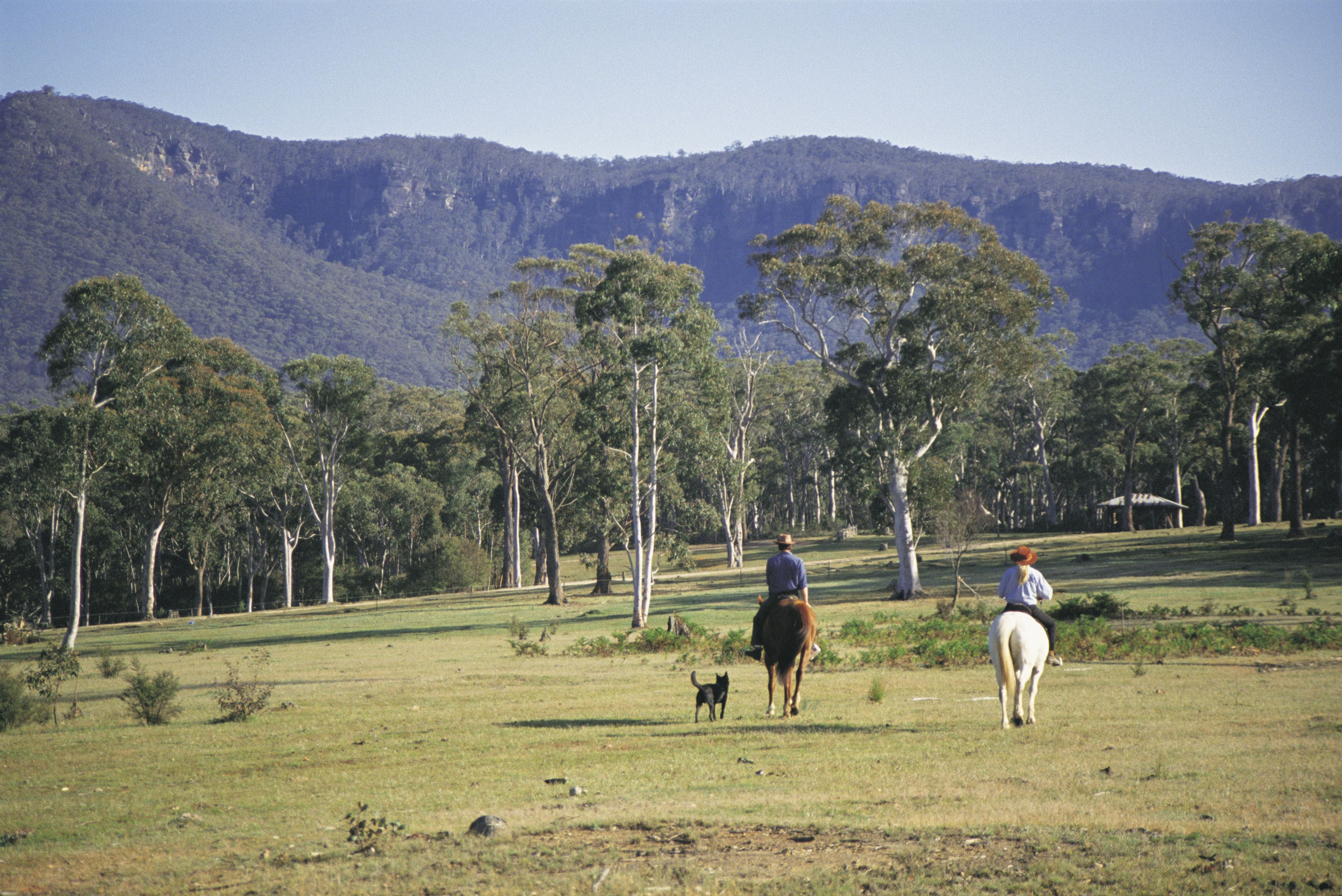 Megalong Valley - Mackay Tourism