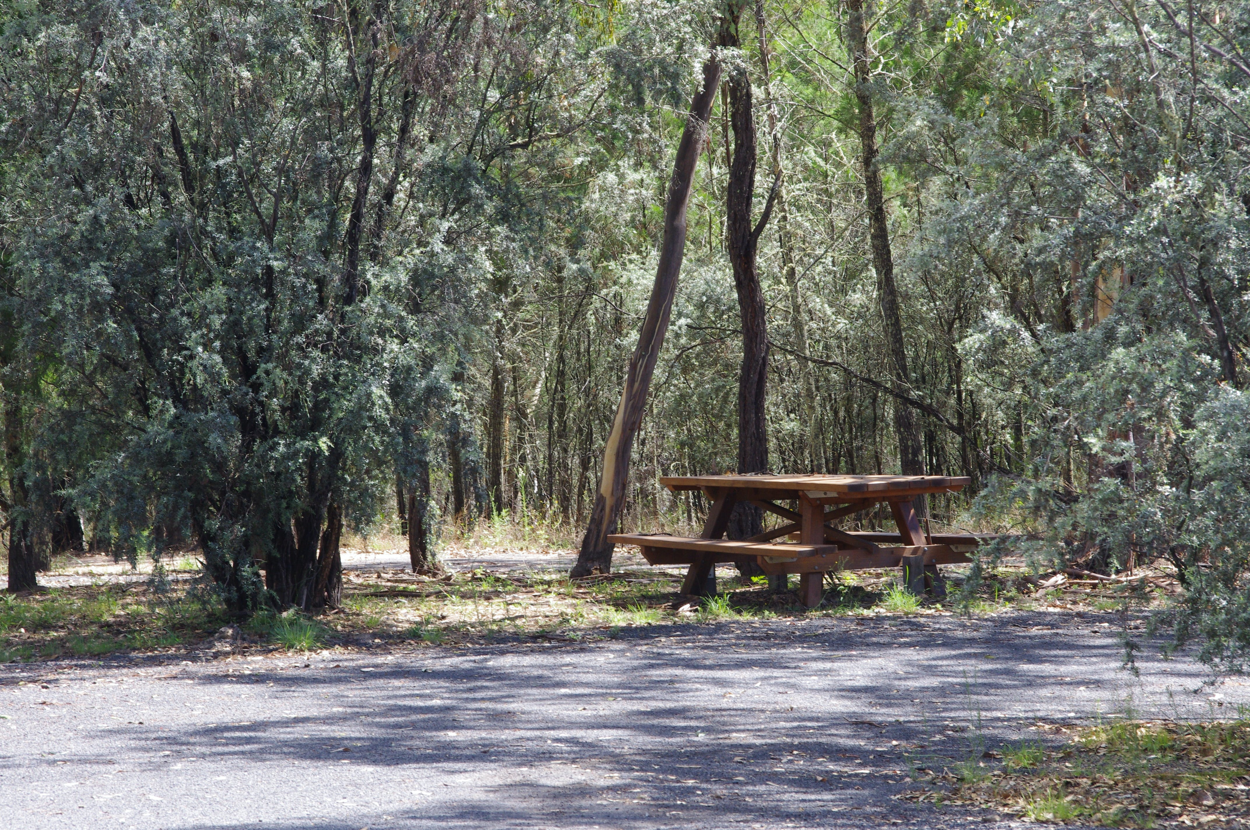 Goonoowigall State Conservation Area - Mackay Tourism