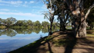 Murray River National Park - Katarapko - Mackay Tourism