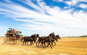 7 Day Outback Giants - Mackay Tourism