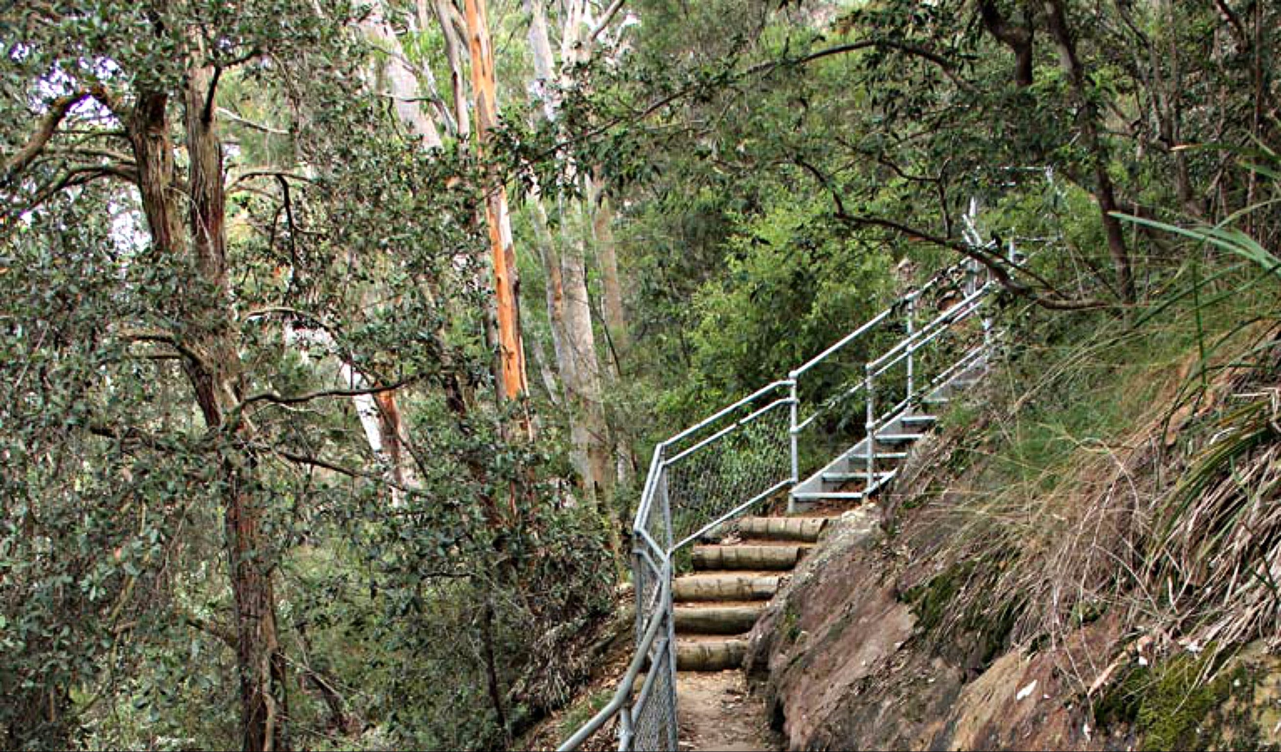 Caleys Lookout Track - Mackay Tourism