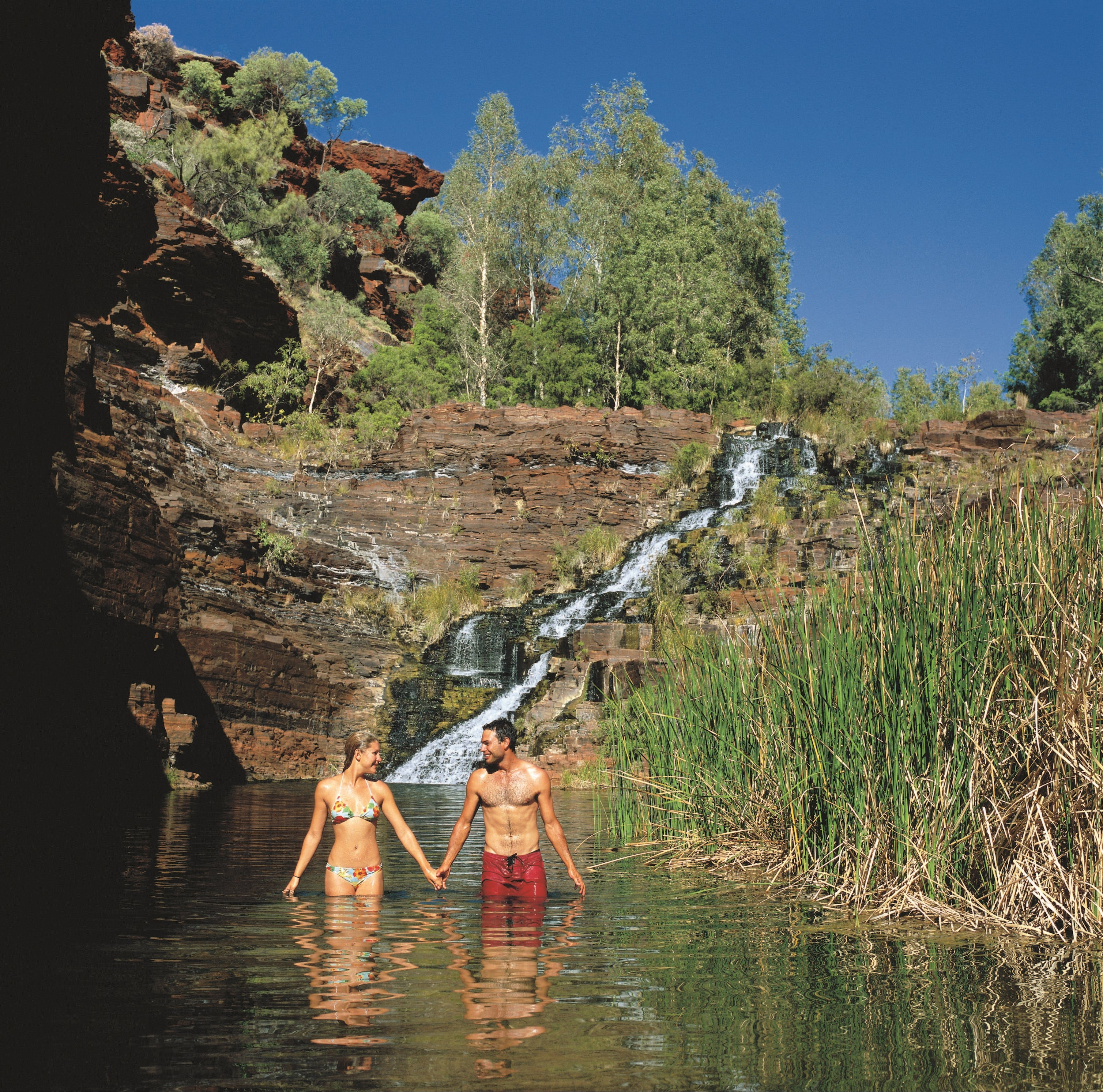 Fortescue Falls - Mackay Tourism