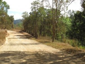 The Bloomfield Track - Mackay Tourism