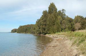 Lake Macquarie State Conservation Area - Mackay Tourism