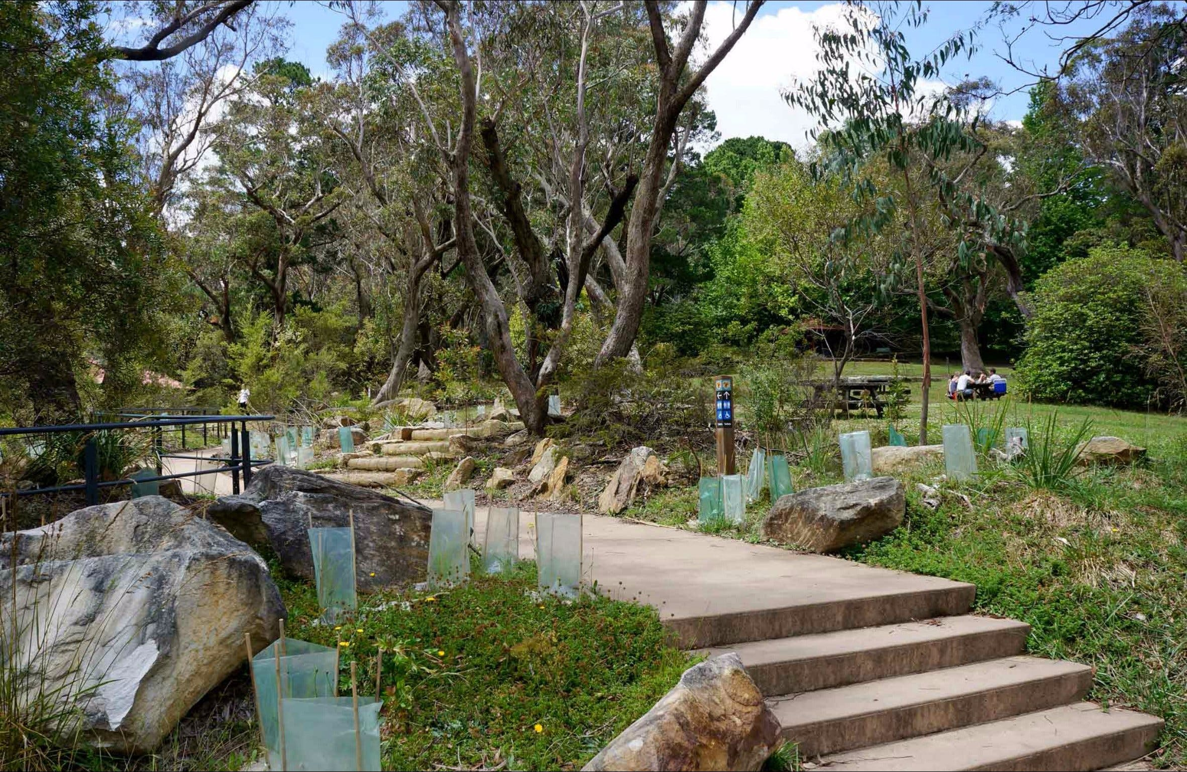 Wentworth Falls picnic area - Mackay Tourism