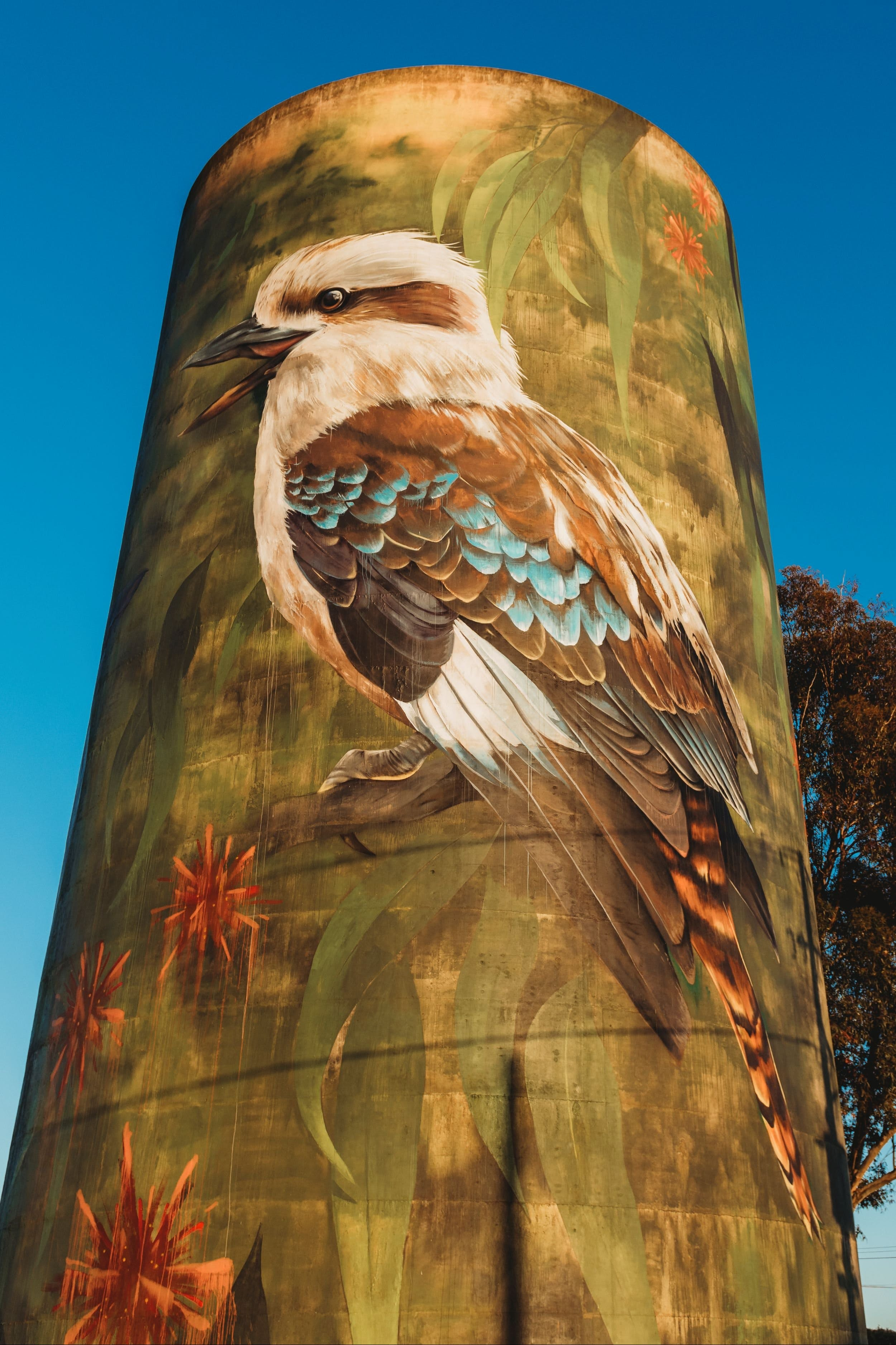 Deniliquin Water Tower Mural - Mackay Tourism