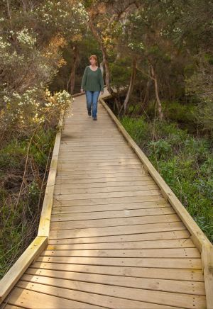 Balcombe Creek Estuary Boardwalk - Mackay Tourism