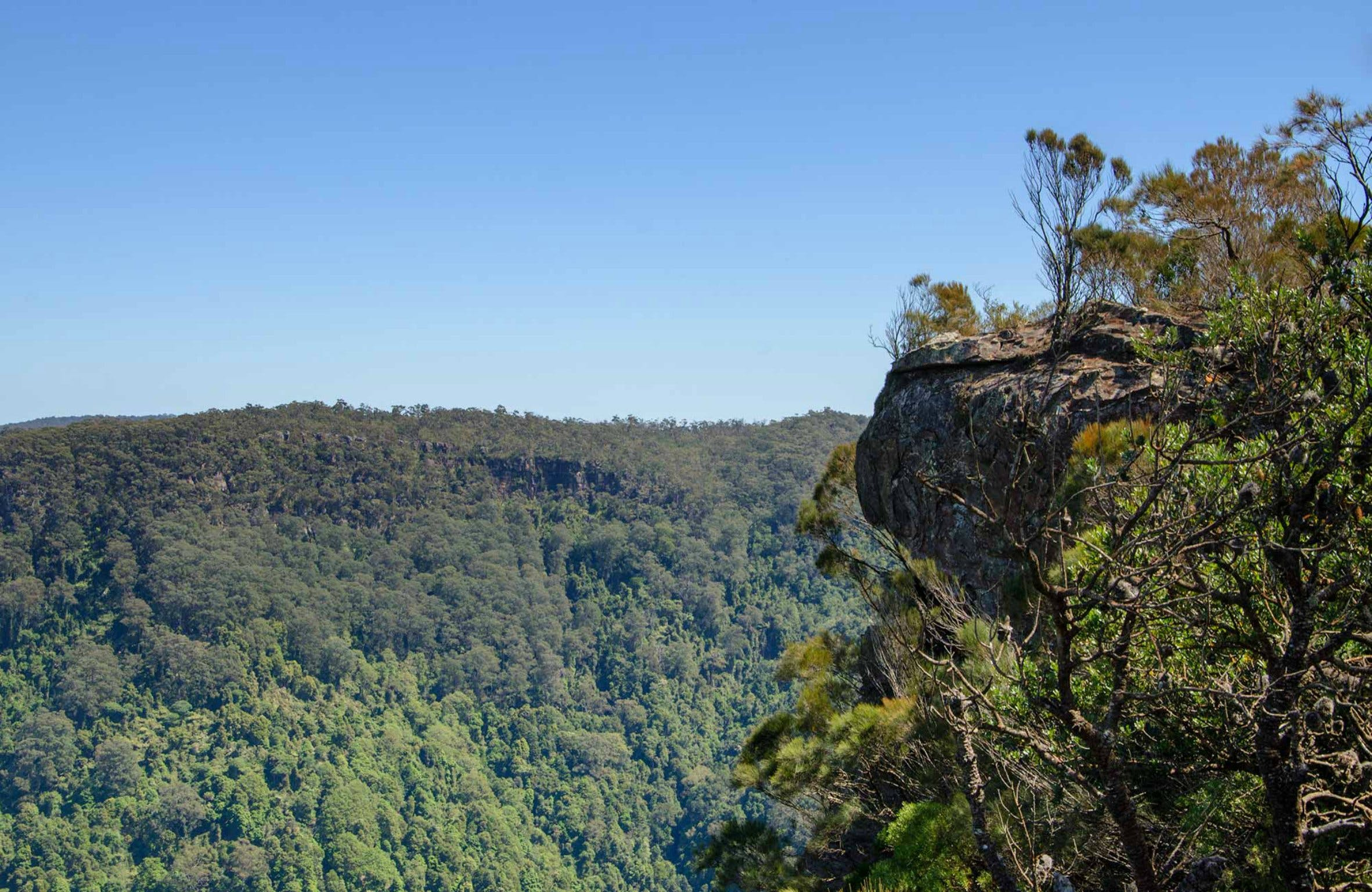 Cooks Nose Walking Track - Mackay Tourism