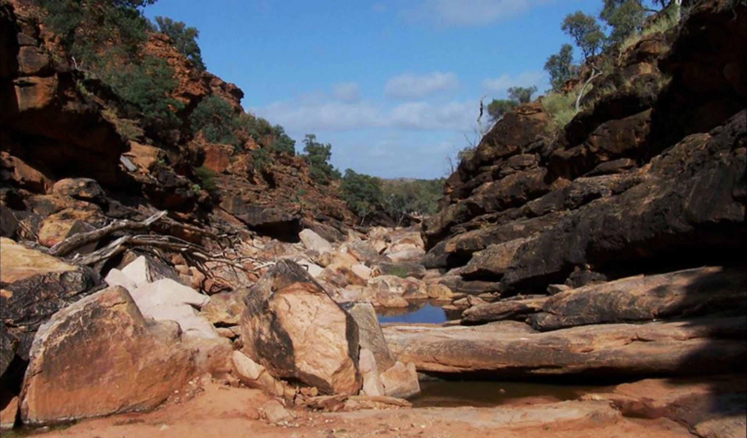 Homestead Gorge trail - Mackay Tourism
