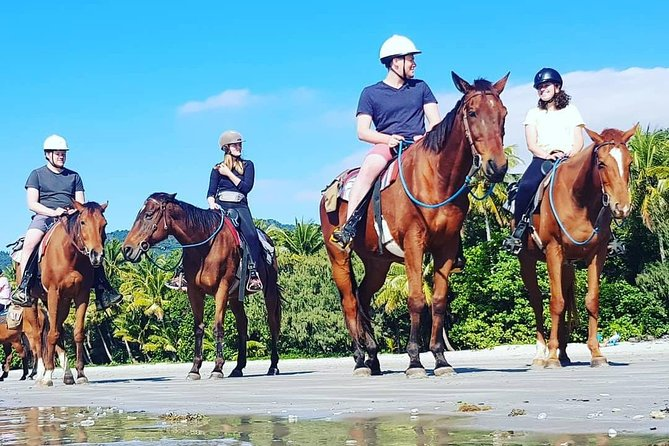 Mid-Morning Beach Horse Ride in Cape Tribulation with Pick Up - Mackay Tourism