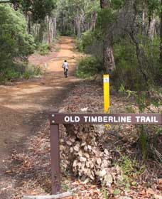Old Timberline and Sidings Rail Trails - Mackay Tourism
