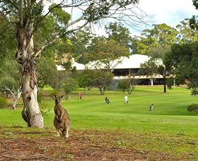 Pambula Merimbula Golf Club - Mackay Tourism