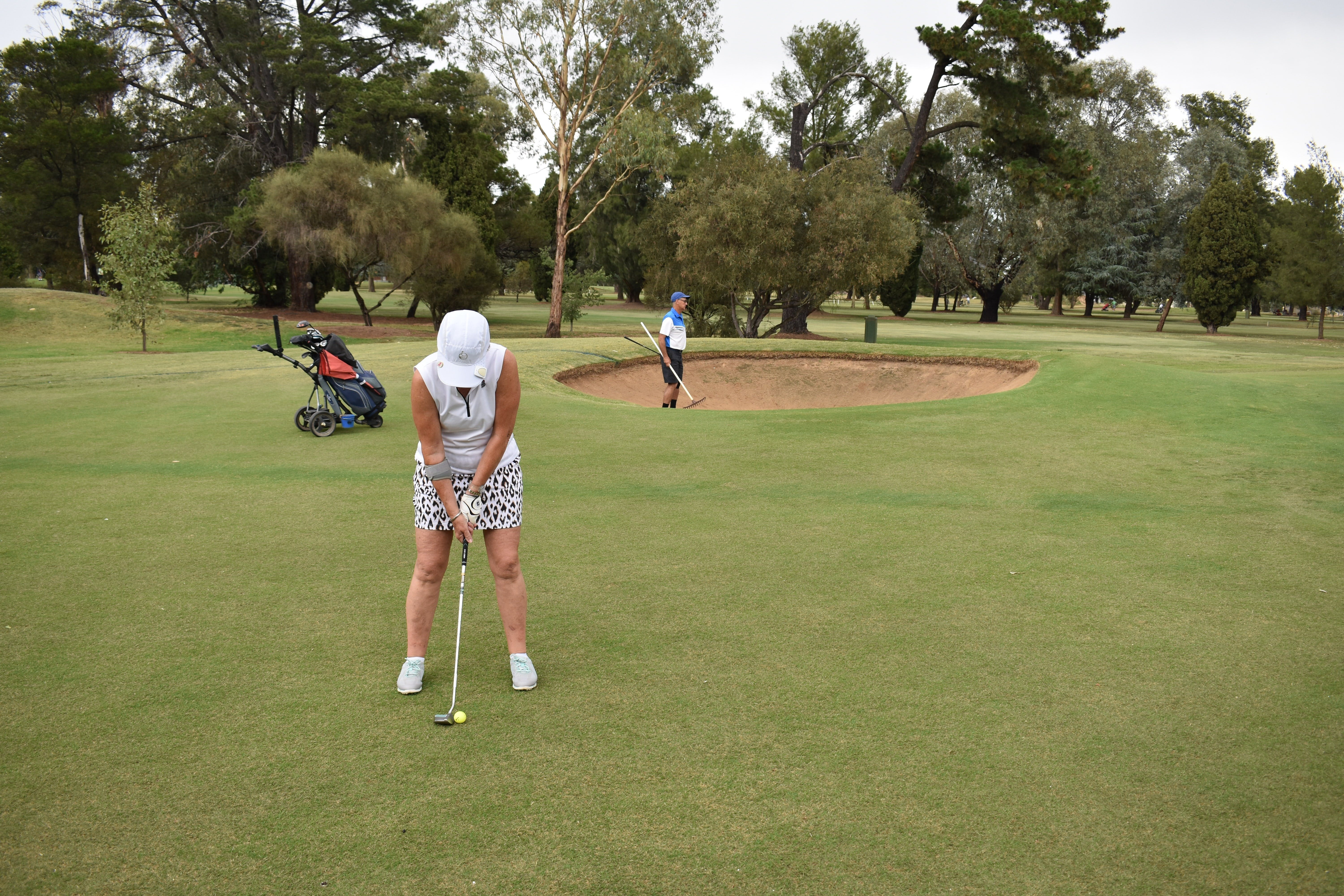 Howlong Golden Shoe Nine Hole Golf Tournament - Mackay Tourism