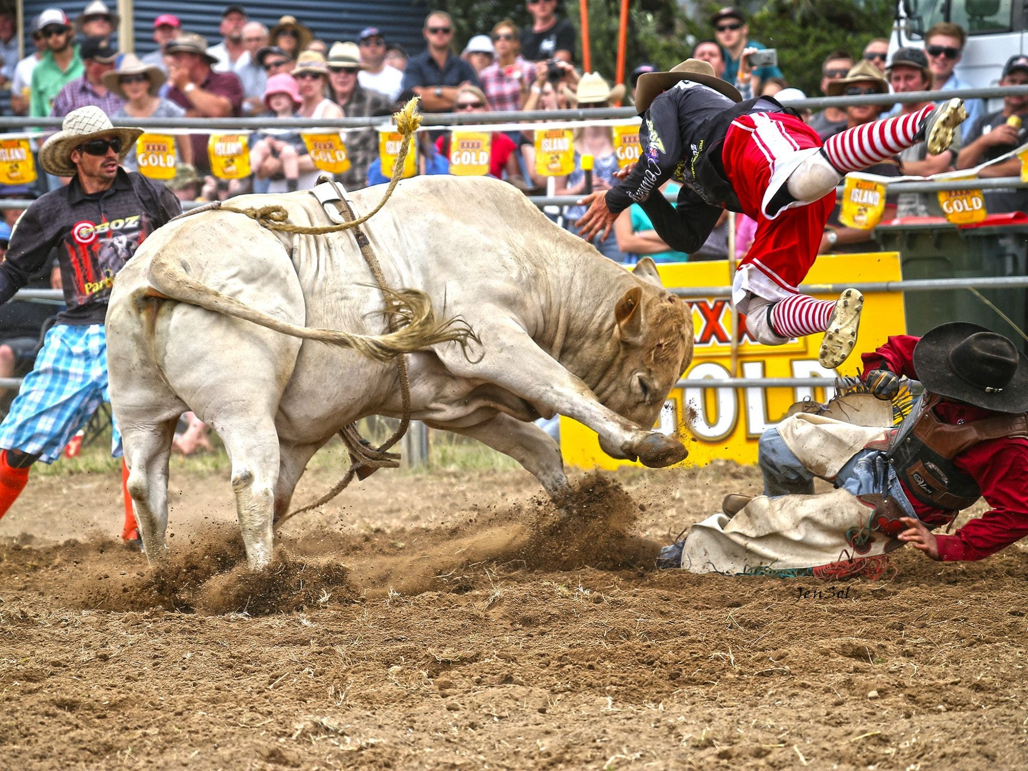 Jindabyne's Man From Snowy River Rodeo - Mackay Tourism