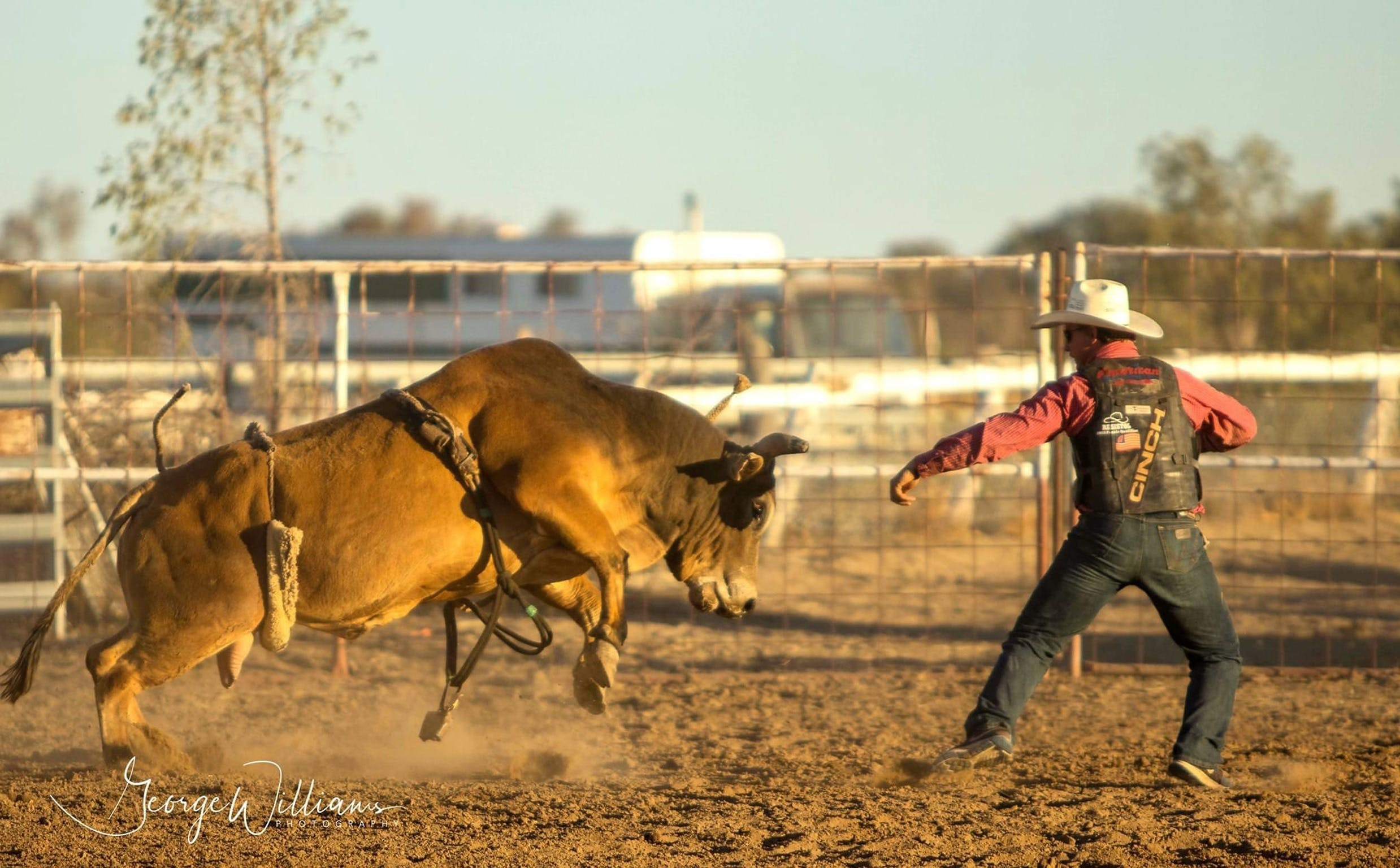 Walgett Charity Bushman's Carnival Rodeo and Campdraft - Mackay Tourism