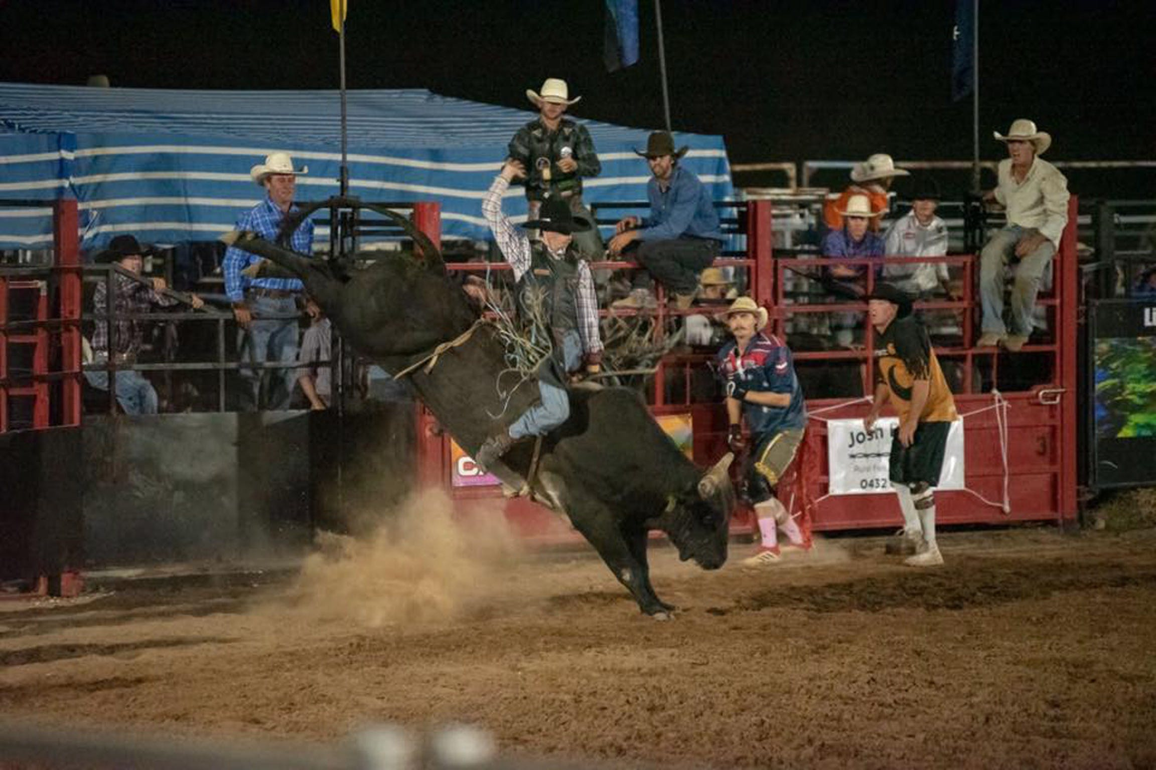 Black Opal Bull and Bronc Ride - Mackay Tourism