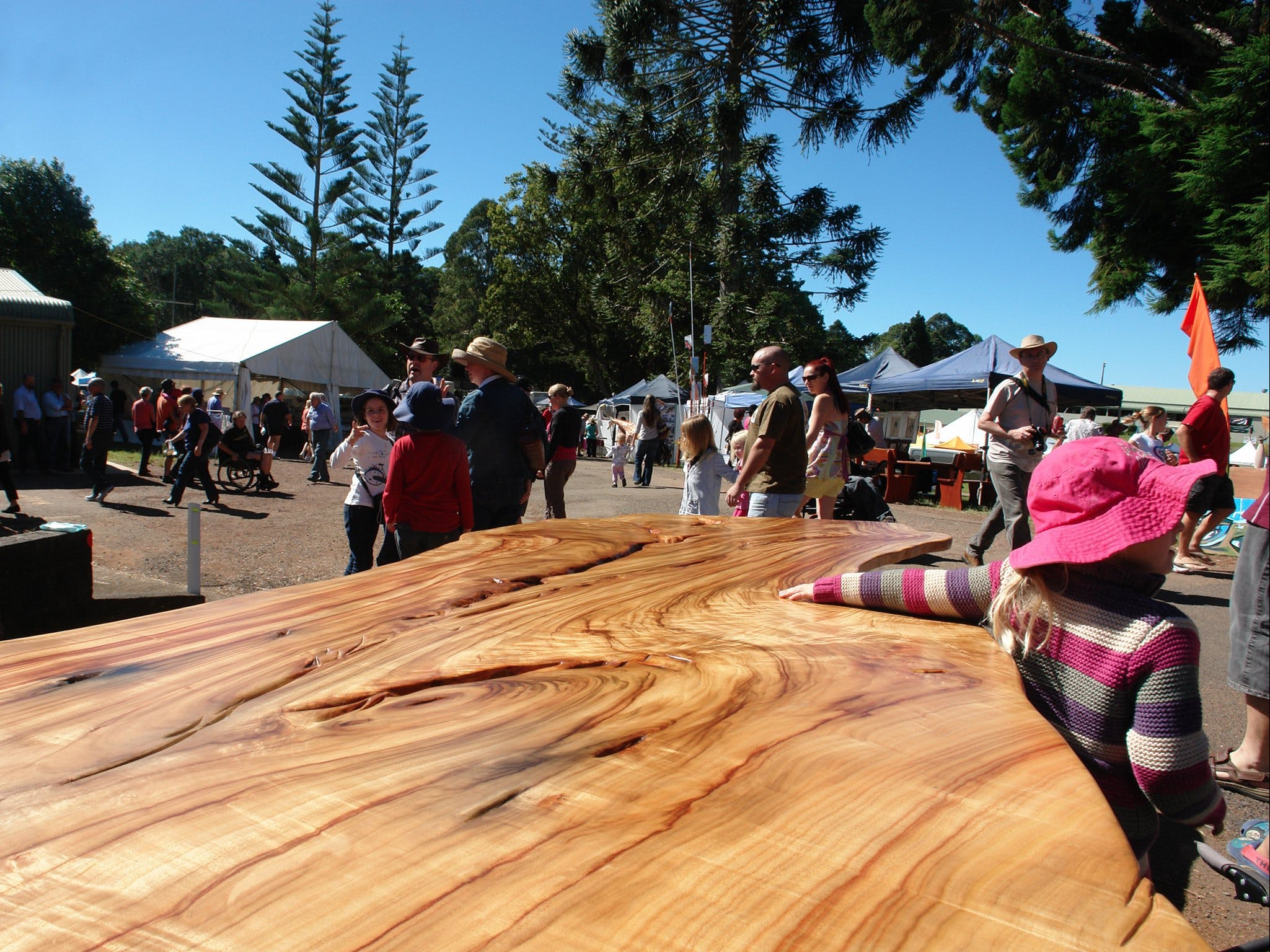 Maleny Wood Expo From Seed to Fine Furniture - Mackay Tourism