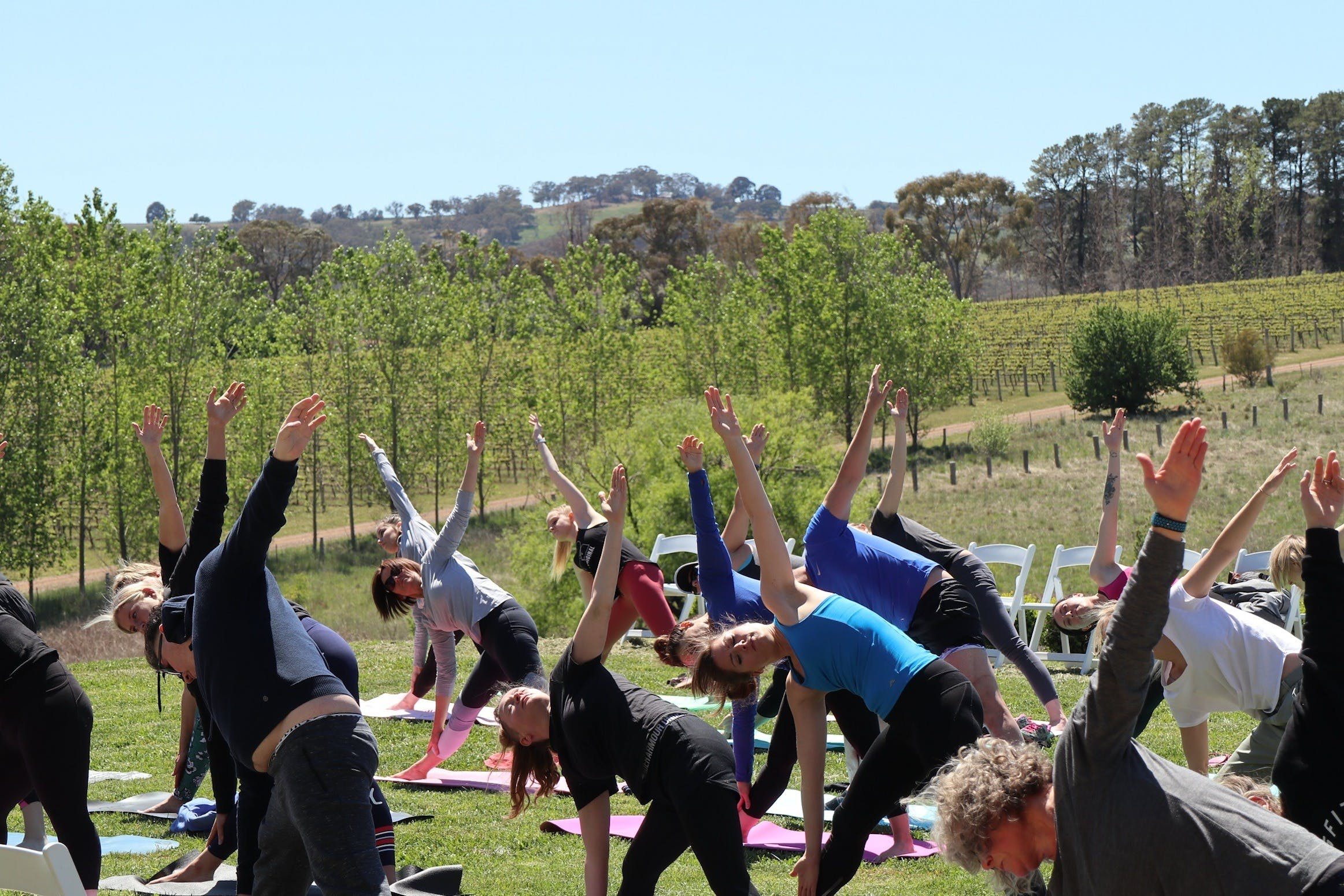 Yoga in the Vines - Mackay Tourism