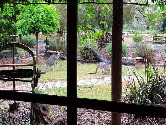 The Wander Inn - Mackay Tourism