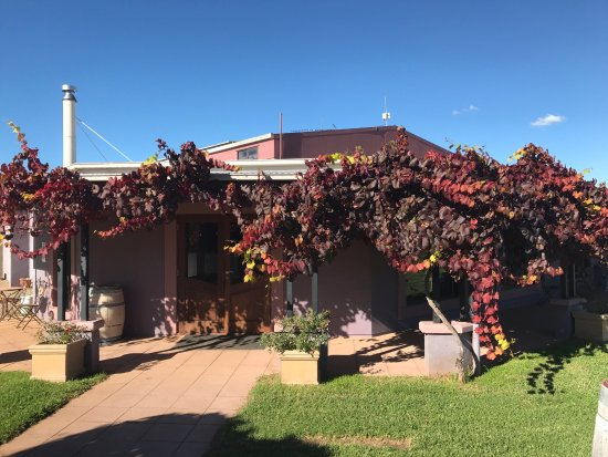 Jester Hill Wines - Mackay Tourism