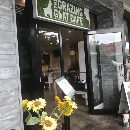 Grazing Goat Cafe - Mackay Tourism