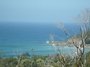 Benji's By The Sea - Mackay Tourism